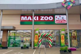 Brama balonowa dla Maxi zoo