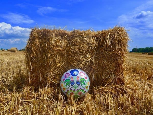 Balony Wrocław - zdjecie balony-folkowe