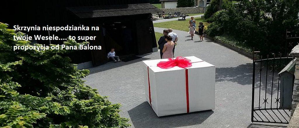Balony Wrocław - zdjecie 19424181_1378143092254037_7940271063050049725_n-1
