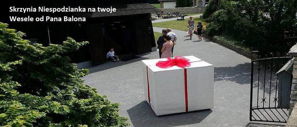 Balony Wrocław - zdjecie 19424181_1378143092254037_7940271063050049725_n