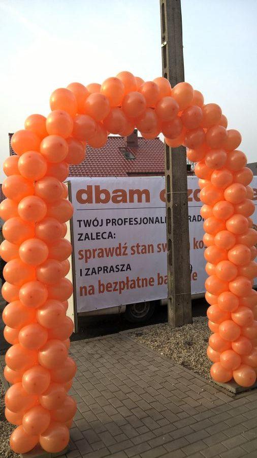 Balony Wrocław - zdjecie realizacje-z-uzyciem-balonow-183